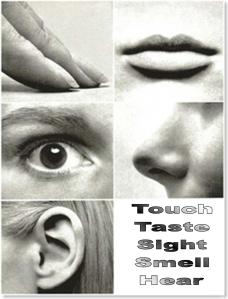 5+Senses+B&W